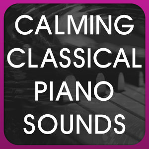 Calming Classical Piano Sounds 歌手頭像