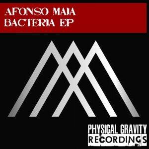 Afonso Maia 歌手頭像