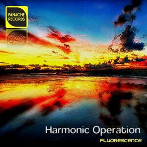 Harmonic Operation 歌手頭像