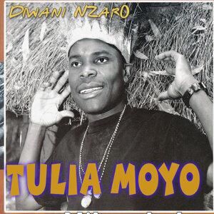 Diwani Nzaro 歌手頭像