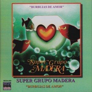 Super Grupo Madera 歌手頭像