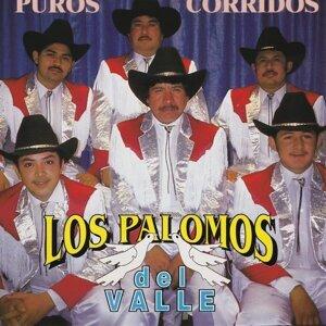 Los Palomos Del Valle 歌手頭像
