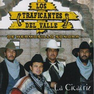 Los Traficantes Del Valle De Hermosillo Sonora 歌手頭像