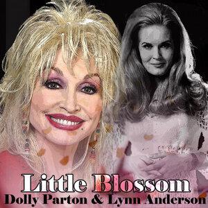 Dolly Parton / Lynn Anderson 歌手頭像