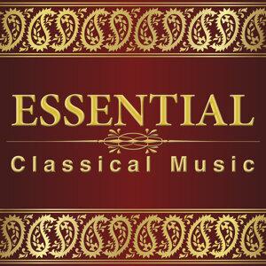 Beethoven Consort|Classical Music Radio|Musique Classique 歌手頭像