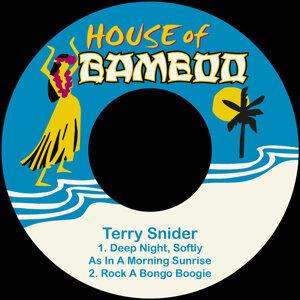 Terry Snider 歌手頭像
