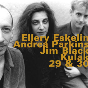 Ellery Eskelin, Andrea Parkins, Jim Black 歌手頭像