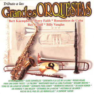 The Francis Pourcel Orchestra 歌手頭像