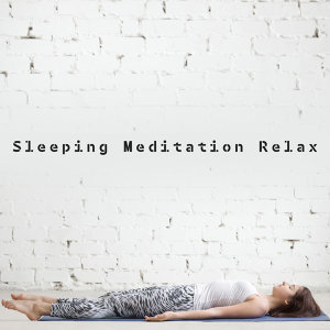 Deep Sleep Meditation 歌手頭像