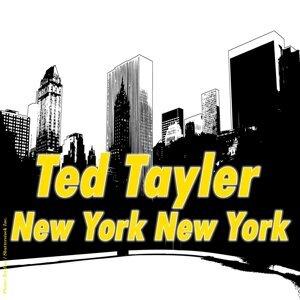Ted Tayler アーティスト写真