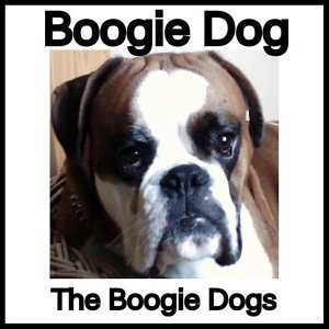 The Boogie Dogs 歌手頭像
