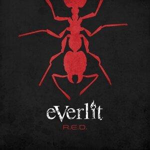 Everlit 歌手頭像