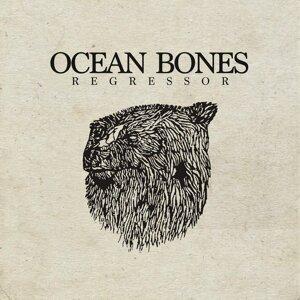 Ocean Bones 歌手頭像