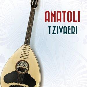 Anatoli 歌手頭像
