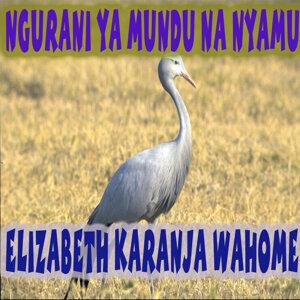 Elizabeth Karanja Wahome 歌手頭像
