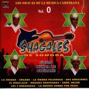 Shacales De Sonora 歌手頭像