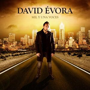 David Évora 歌手頭像