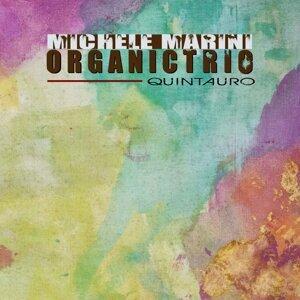 Michele Marini Organic Trio 歌手頭像