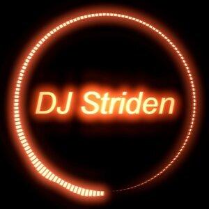 DJ Striden 歌手頭像