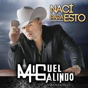 Miguel Galindo Y Su Bandon 歌手頭像