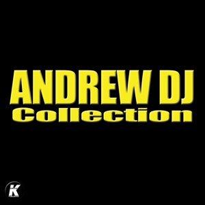Andrew DJ 歌手頭像