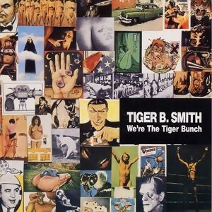 Tiger B.Smith 歌手頭像