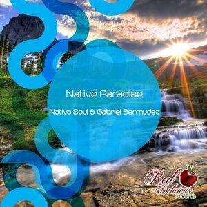 Nativa Soul, Gabriel Bermudez 歌手頭像