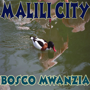 Bosco Mwanzia 歌手頭像