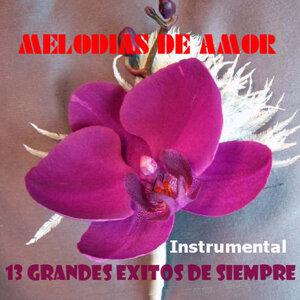 Orquesta Melodias De Amor 歌手頭像