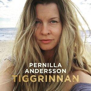Pernilla Andersson (潘妮拉安德森) 歌手頭像