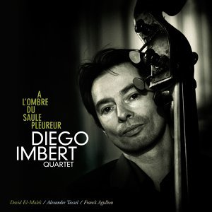 Diego Imbert Quartet 歌手頭像