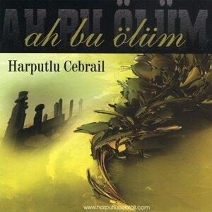 Harputlu Cebrail 歌手頭像