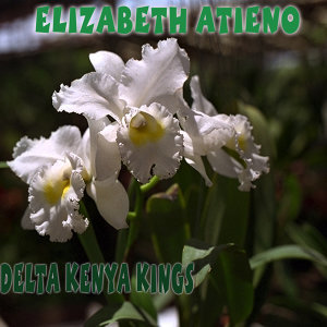 Delta Kenya Kings 歌手頭像