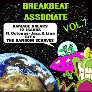 Breakbeat Associate Vol. 7 歌手頭像