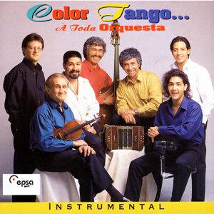 Color Tango 歌手頭像
