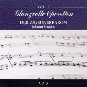 Wiener Chorvereinigung und Wiener Symphonisches Orchester アーティスト写真