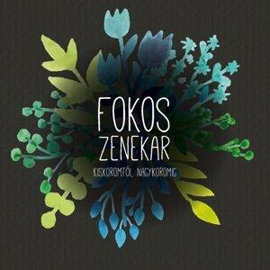 Fokos Zenekar 歌手頭像