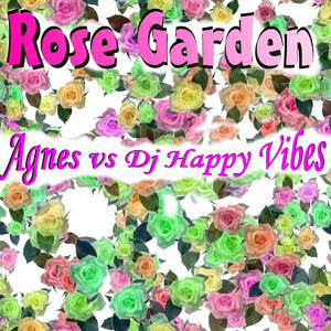 Agnes Vs. DJ Happy Vibes 歌手頭像
