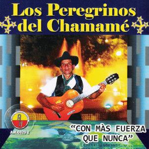 Los Peregrinos del Chamamé 歌手頭像