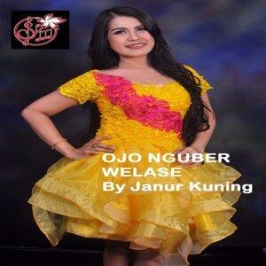 Janur Kuning 歌手頭像