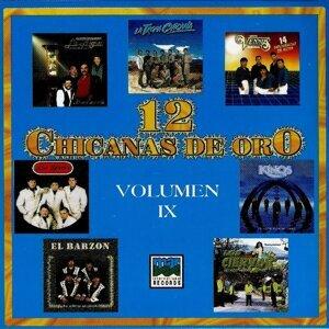 12 Chicanas De Oro 歌手頭像