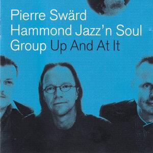 Pierre Swärd 歌手頭像