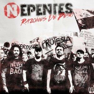 Nepentes 歌手頭像