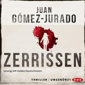 Juan Gómez-Jurado 歌手頭像