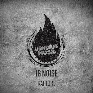 Ig Noise