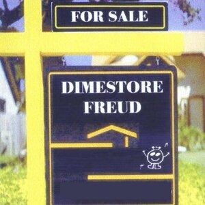 Dimestore Freud 歌手頭像
