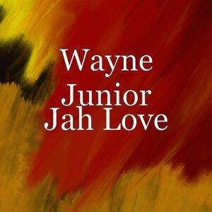 Wayne Junior 歌手頭像