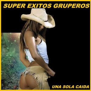 Super Exitos Gruperos 歌手頭像