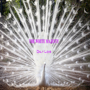 The White Majesty 歌手頭像