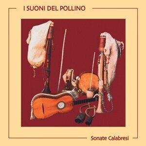 Piero Adduci, Walter Astorino & Francesco Rusciano 歌手頭像